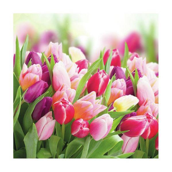 """Glorious tulips"" lunchserviett"