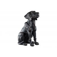 Hund svart