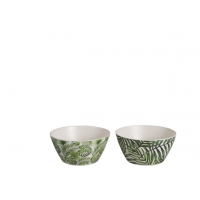 Bowl Tropical Bamboo Green