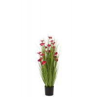 Grass w/flowers