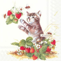 """Kitty and strawberries"" lunch"