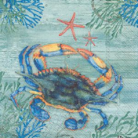 """Clearwater crab and starfish"" lunch"
