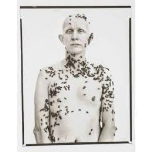 Plakat Richard Avedon- Avedons Amerika