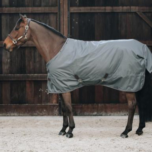 Kentucky Turnout Rug All Weather