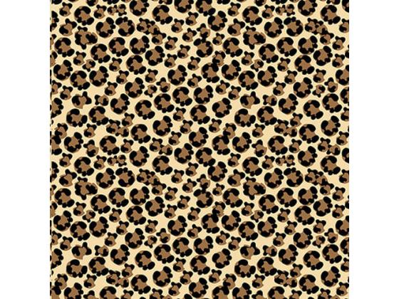 Shoe Love is True Love leopard