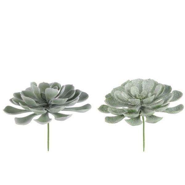 kunstig plante, sukkulent