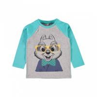 Chip langermet t-skjorte Chipmunks turkis/grå