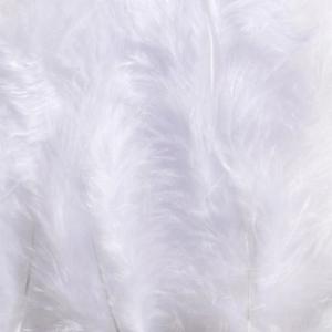 Fjær Hvite 5-10 cm 12 stk
