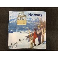 Norway putetrekk 45x45