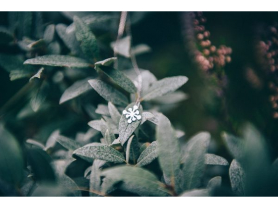 Snorose sølvsmykke