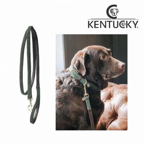 Kentucky Plaited Nylon Dog Lead