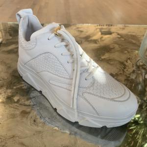 Portia Snake Sneakers