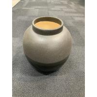Pure culture cirrus vase