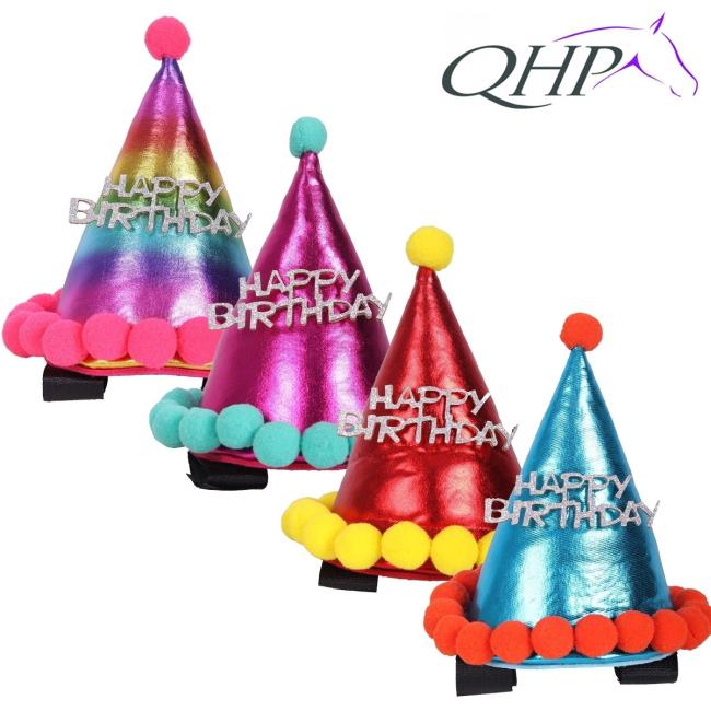 Birthday hat horse
