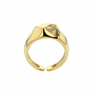 Hasla Elements Multiplicity ring, gull