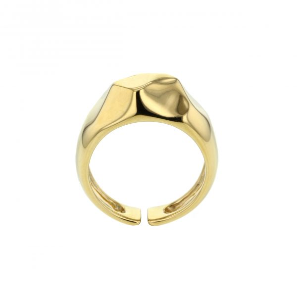 Hasla Elements Multiplicity ring, gull