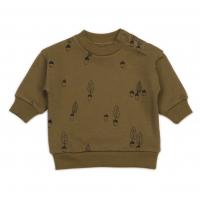 Organic sweatshirt - Acorn Aop Spice