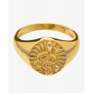 Snake, ring