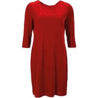 Ewy Red Velvet Dress
