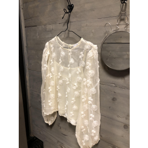 Ice rose blouse