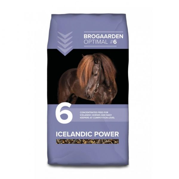 Icelandic no6