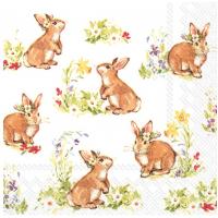 """Servietter, """"Sweet lovely bunnies white"""""""