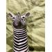 Zebra vase type høy fra Quail