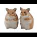 Hamster-par Salt&Pepper fra QUAIL CERAMICS