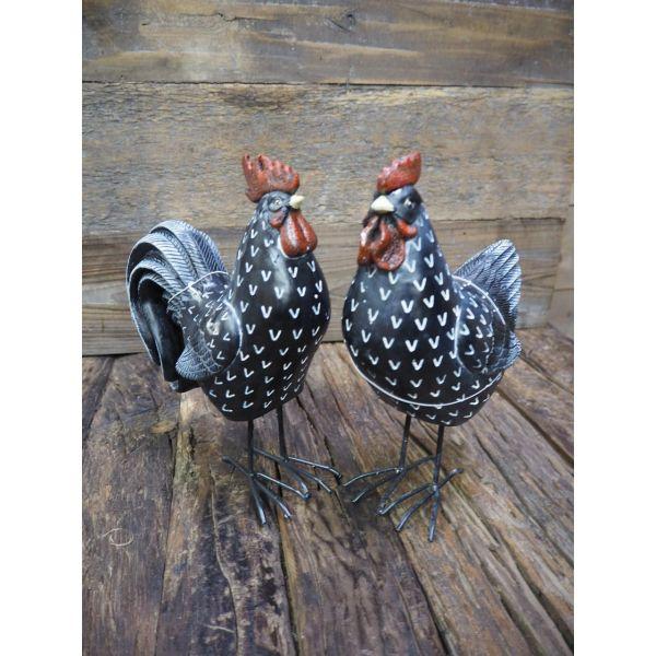 Høne/hane svart