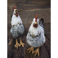 Høne/hane Blomkvist