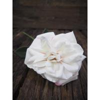 Rose hvit/rosa stor
