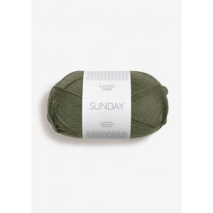 Sunday 9561 Vintermose - Sandnes Garn