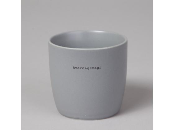 Søgne grå kopp