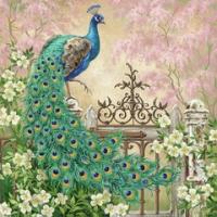 Noble peacock lunsj
