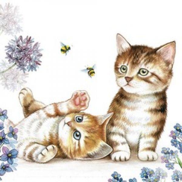 Serviett Cats & bees lunsj