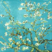 Almond Blossom Lunsj
