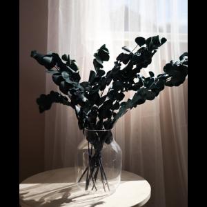Eucalyptus Espiral -Dark