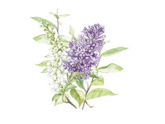 """Lilac white"" kaffeserviett"