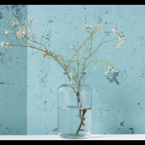 Vase Jar - klar