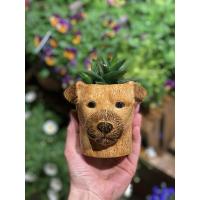 Border terrier penneholder/kaffekopp - Quail ceramics