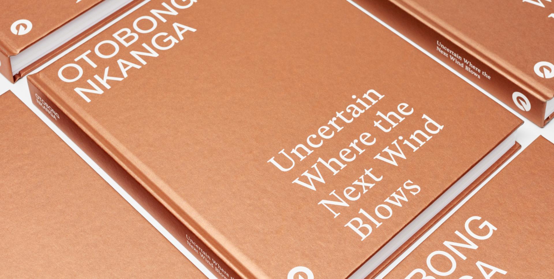 Otobong Nkanga: Uncertain Where the Next Wind Blows