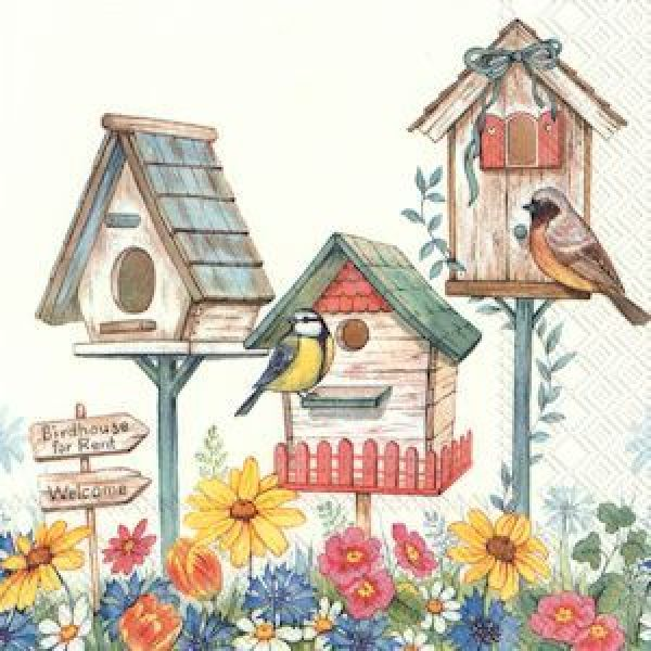 """""""Birdhouse for rent"""" lunch"""