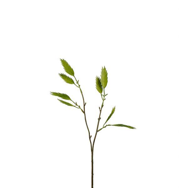 Kvist m/grønne blader