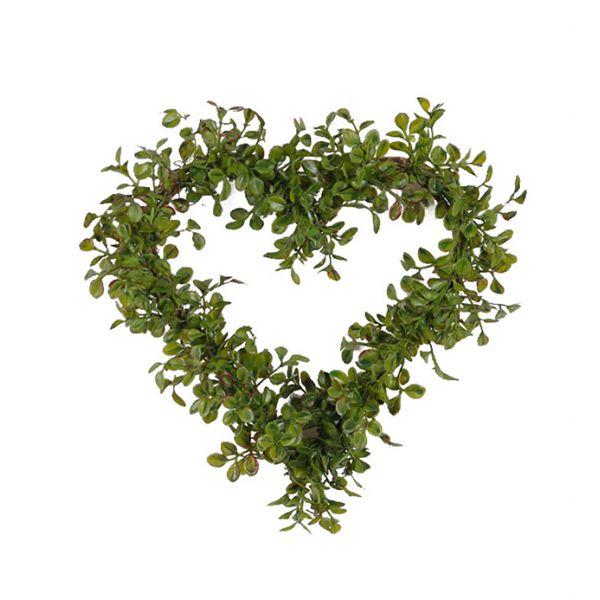 Hjertekrans grønn