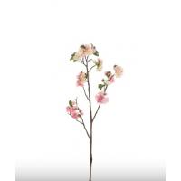 Gren med lyserosa blomster