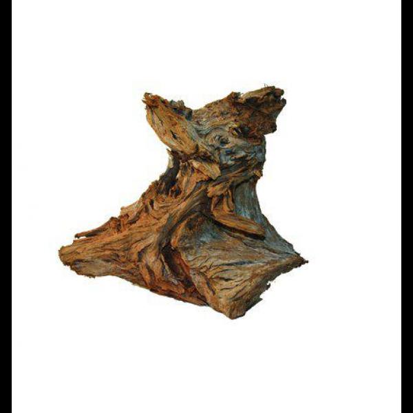 Mangroverot Small mix 20-35cm