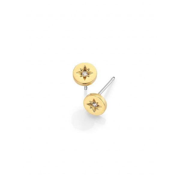 Gullbelagt små stjerne ørepynt
