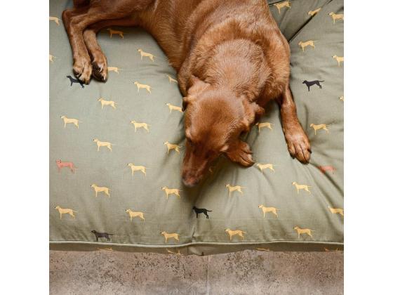 Hundemadrass Fab Labs