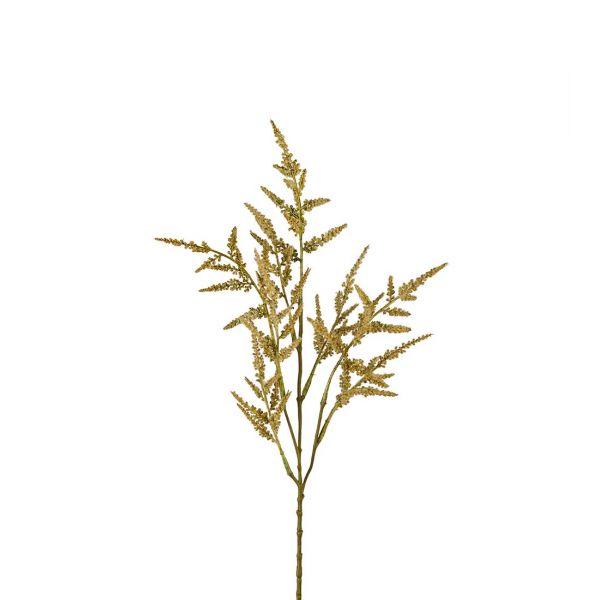 Astilbe/Spir kvist grønn