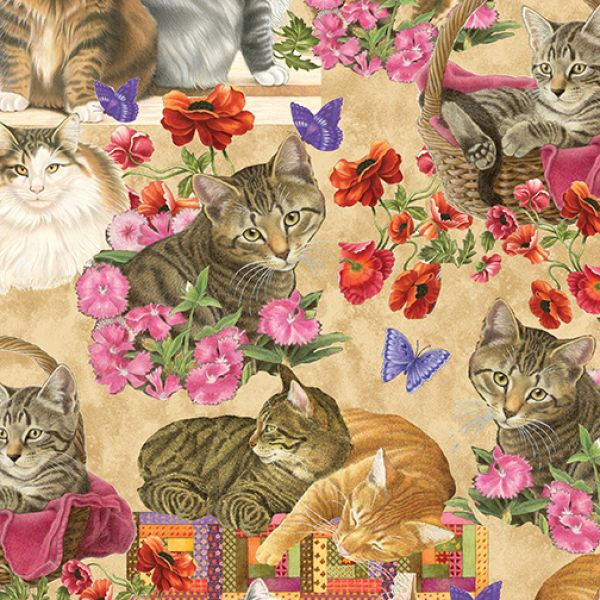 Cats and Quilts katter